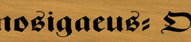 Taverne Kupferkrug – Rätsel im Kupferkrug – Februar 2014