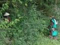 ein Männlein steht im Walde ...